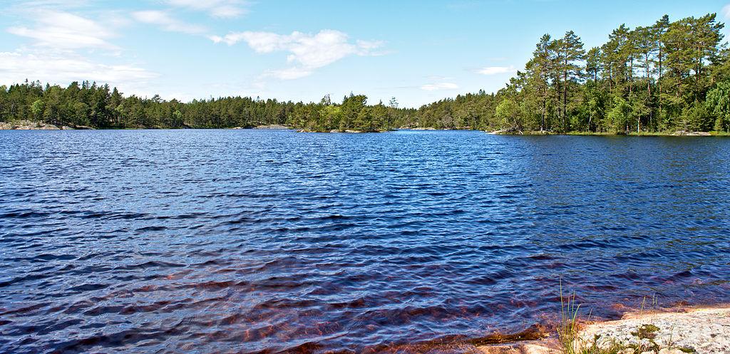 Sjön Vitträsk på Ornö. Små vågor på vattnet, gran och tall i bakgrunden, himmel med några moln över skogen.