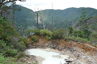 Cagua Volcano - Image: Volcanic vent on the forested floor of the Mt. Cagua crater Zoo Keys 266 001 g 012