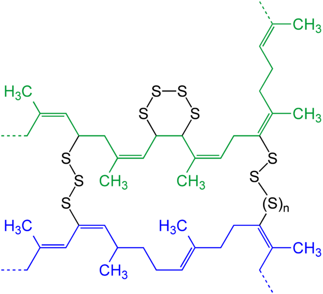 Schematic presentation of two strands (blue and green) of natural rubber after vulcanization with elemental sulfur. - Vulcanization