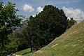 WO 35 Eibe Oberleidenberg 04.jpg