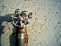 Water tap (255235429).jpg