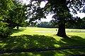 Waterers Park, Knaphill - geograph.org.uk - 45572.jpg