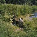 Waterval - Arnhem - 20375450 - RCE.jpg