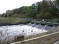 Weir from the Nene - geograph.org.uk - 265409.jpg