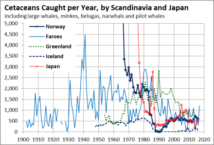 Whales caught per year Whales Nordic.png