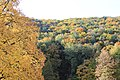 Wienerwald-Herbst 5442.jpg