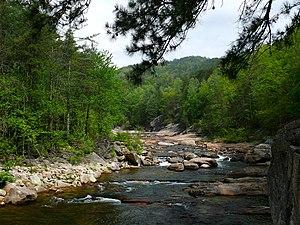 Wilson Creek (North Carolina) - Wilson Creek