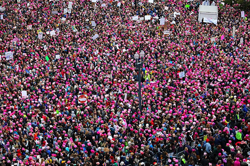File:Women's March 2017-01 (12).jpg