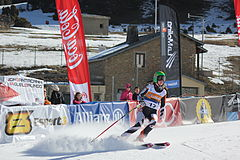 Women's standing superg skier number 12a