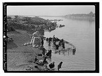 Wool washing on Tigris banks at Mosul LOC matpc.13248.jpg