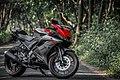 Yamaha R15 V3.0.jpg