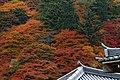 Yoshimine-dera (8255232587).jpg