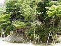 Yoshinoyama sesonjiato 2010624.JPG