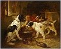 Zacharie Noterman - Dogs at Feeding.jpg