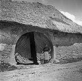 """""""K?lonja"""" (vhod v lopo in nato na """"borjač"""") pri Kmetovih, Gradišče 1955.jpg"""