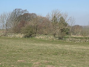 Milecastle 22 - The site of Turret 22A