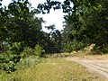 +20180611Müritz-Nationalpark.vor Ankershagen.-008.jpg