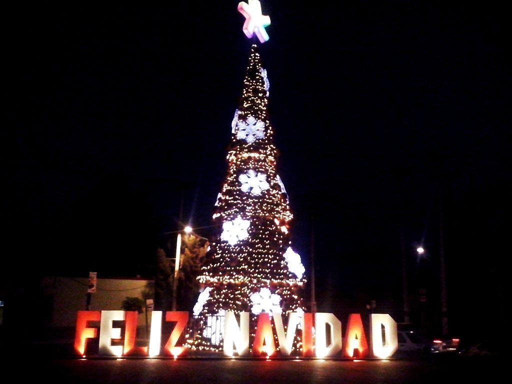 File rbol de navidad en actopan hidalgo en m xico 2015 - Arbol tipico de navidad ...