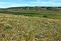 Вид в восточном направлении - panoramio (21).jpg