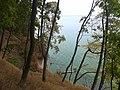 Вид на Канівське водосховище з дніпровської кручі (біля с.Балико-Щучинка). фото 2.jpg