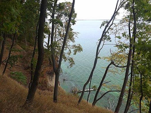 Вид на Канівське водосховище з дніпровської кручі (біля с.Балико-Щучинка). фото 2