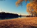 Восеньскі пейзаж каля ракі Сож ... Autumn landscape at the river the Sozh - panoramio.jpg