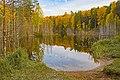 В Медведском бору озеро Чваниха.jpg