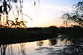 Захід сонця над Терсою.jpg