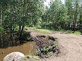 Канава - panoramio (3).jpg