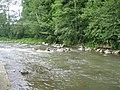 Річка Жденівка, права притока Латориці - panoramio.jpg