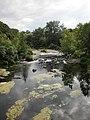 Тиша та спокій річки Рось у Корсунь-Шевченківському парку.JPG