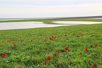 Orlovsky District, Rostov Oblast - Rostovsky Nature Reserve, Orlovsky District