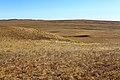 Урочище Жанатаускен. Вид в восточном направлении. Видна гора Маяктау - panoramio.jpg