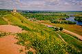 Чёртово городище, уникальный памятник археологии и истории федерального значения, панорама, Елабуга.jpg