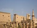 معبد الاقصر tb محمد صفوت.png