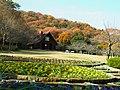 二上山ふるさと公園にて Nijōzan furusato kōen 2011.12.12 - panoramio.jpg