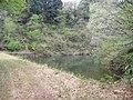 溜池(大池) - panoramio (1).jpg