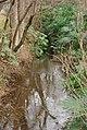 玉川上水 Tamagawa Johsui Cannel - panoramio.jpg
