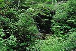 白岩の滝 - panoramio (6).jpg
