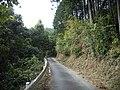 県道217号線 - panoramio.jpg