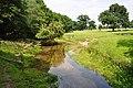 -2010-06-27 Hagon Beck, Gunton Park, Norfolk.jpg