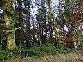 0021 Reserva de la Biosfera Terras do Miño.jpg