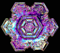 01 snowflake colorized early experimental digital photography by Rick Doble.png
