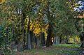 034 - Wien Zentralfriedhof 2015 (22604449343).jpg