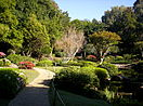 Japanese gardens at the Mount Coot-tha Botanic Gardens