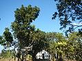 09733jfMaharlika Highway Good Shepherd Chapel San Ildefonso Bulacanfvf 14.JPG
