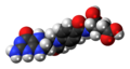 10-Formyltetrahydrofolate-3D-spacefill.png