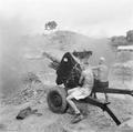 102 Field Battery, Borneo 1965(AWM CUN650778MC).png