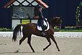 13-04-21-Horses-and-Dreams-Karin-Kosak (9 von 21).jpg