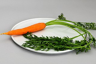 Carrot Root vegetable, usually orange in color